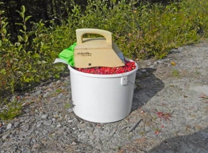 Комбайн для сбора брусники