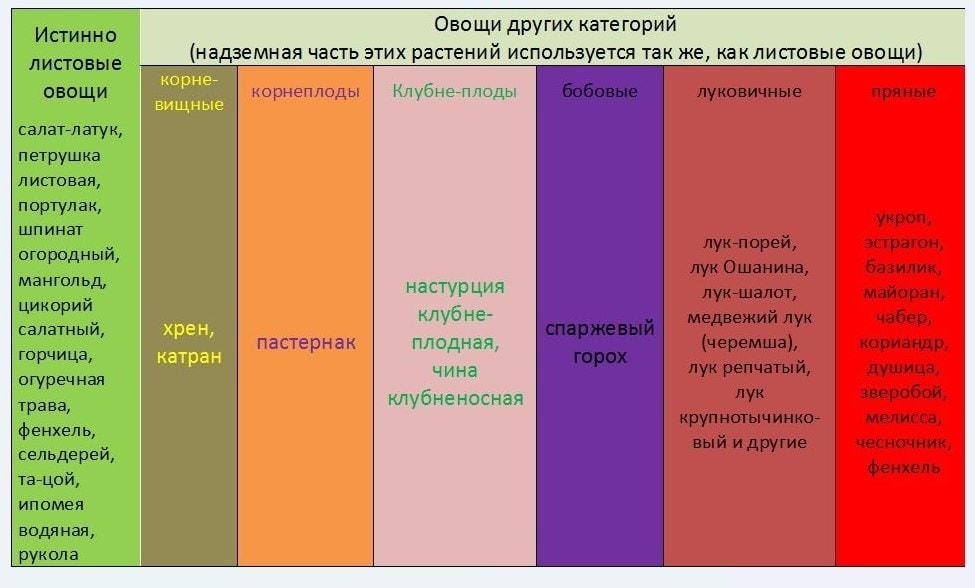 Таблица классификации зелени