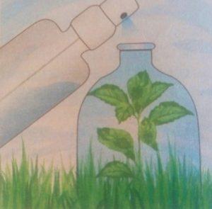 обработка сорняка в бутылке